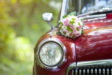 marriage   Longevity LIVE