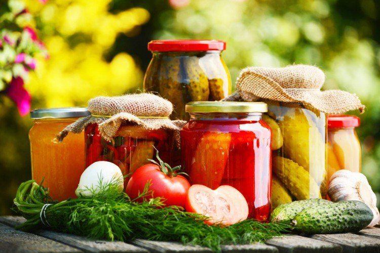 fermented | Longevity LIVE