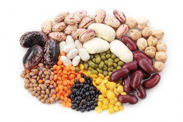 protein | Longevity Live