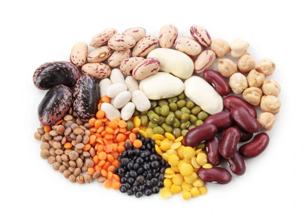 Pinto beans for protein support