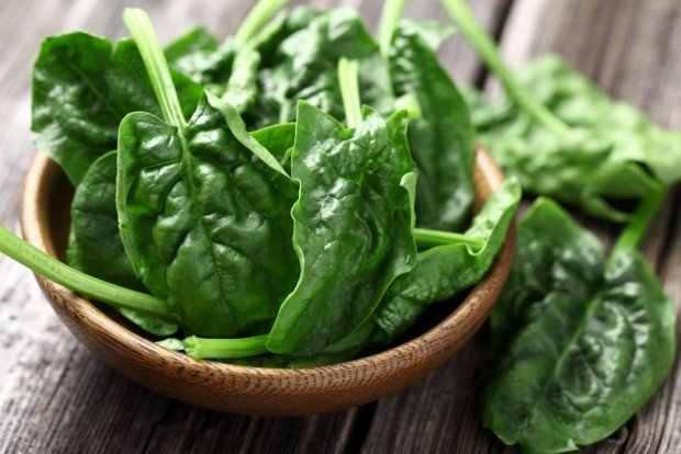 Spinach for plant protein