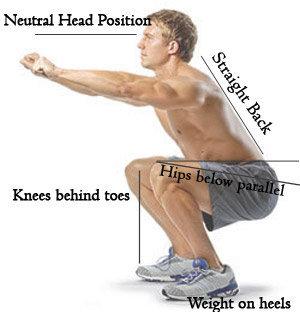 Free weight squat copy