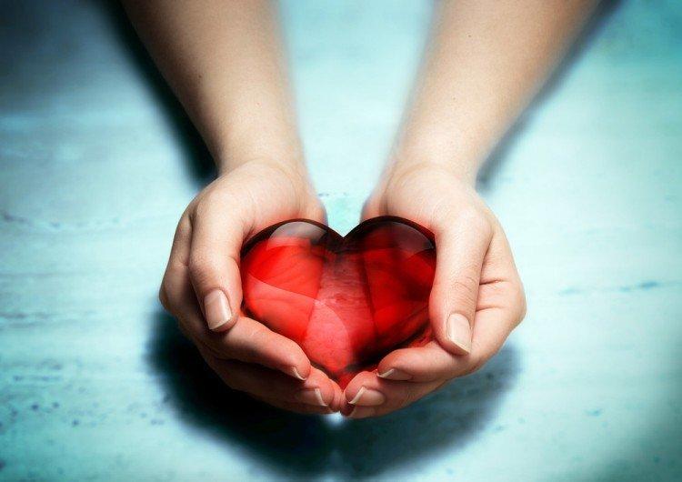 Cholesterol | Longevity Live