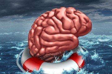 brain and turmeric