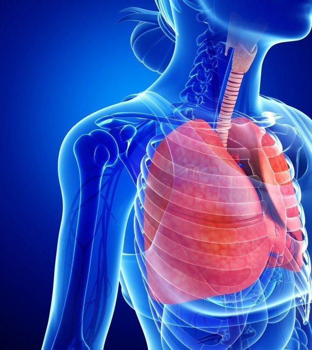 pneumonia | Longevity LIVE