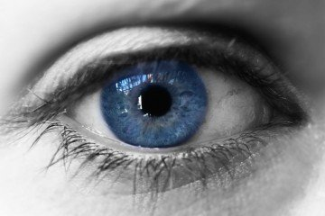 Vision and contact lenses