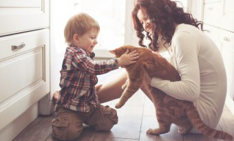 Mom and son playing with a cat at home