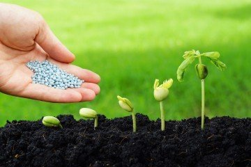 regenerative farming | Longevity LIVE