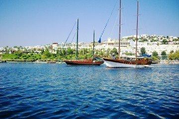 Turkish Aegean
