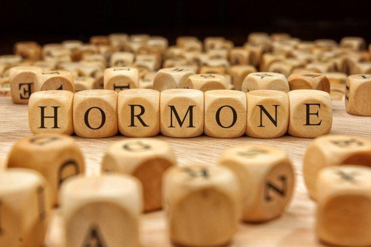 hormones | Longevity LIVE