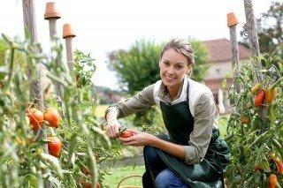 garden and asian longhorned tick | Longevity Live