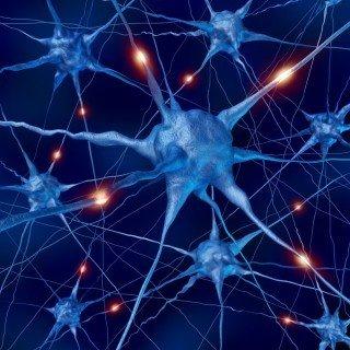 Brainwave Optimization™