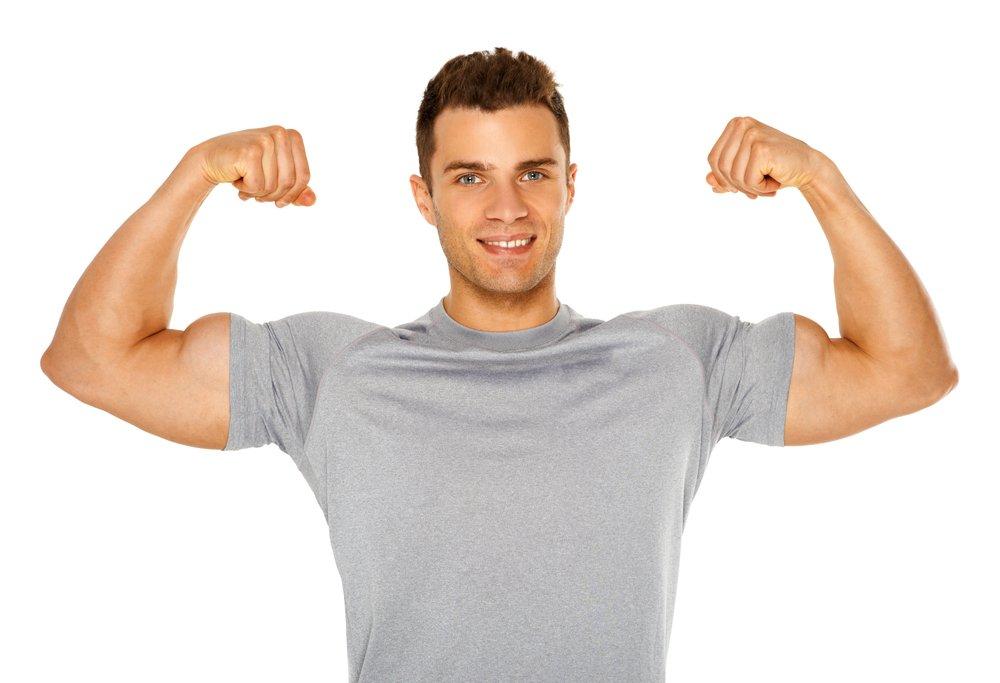 sperm muscle