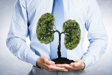 lungs | Longevity LIVE