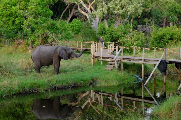 Ecotourism | Longevity LIVE
