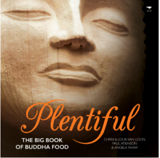 Plentiful Book Cover | Longevity Magazine