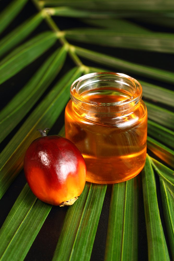 palm oil health