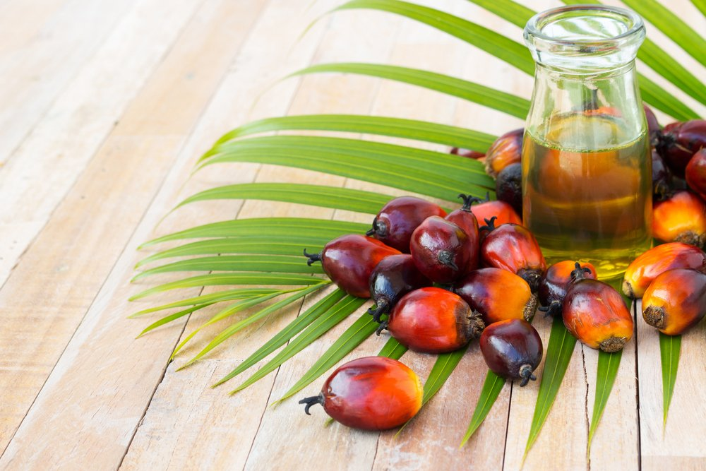 Malaysia's May palm oil stockpiles seen hitting 8-month low – survey