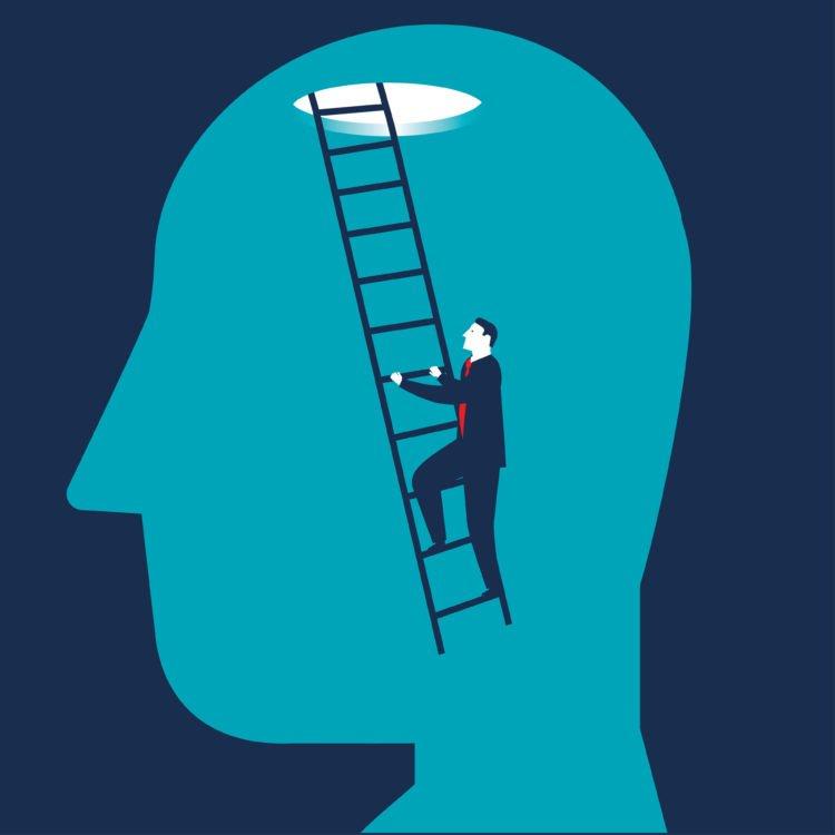 Cérebro |  Longevidade LIVE
