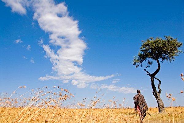 walking the earth | Longevity Live