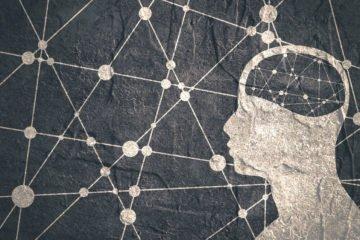 brain | Longevity Live