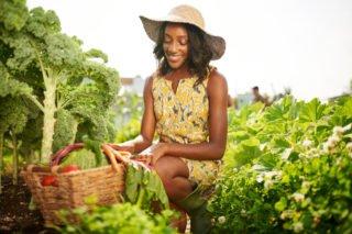 regenerative farming   Longevity Live