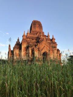 Bagan in Verdant