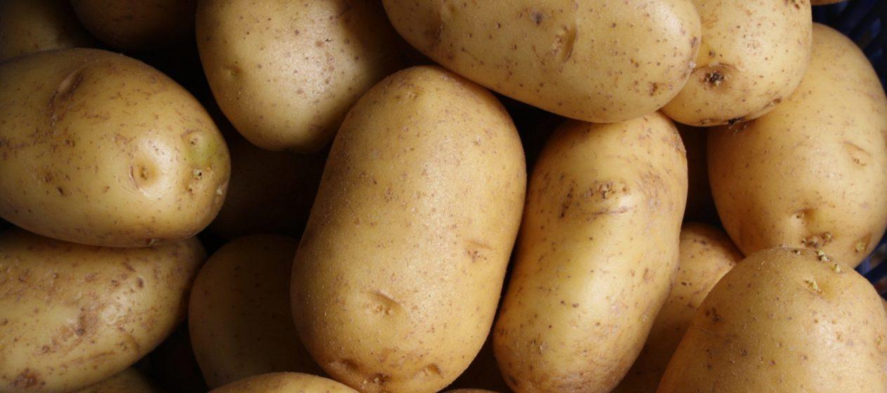 potatoes   Longevity LIVE