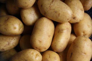potatoes | Longevity LIVE