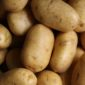 potatoes | Longevity LIVE