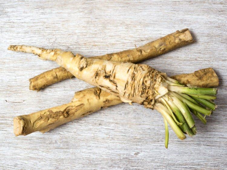 horseradish | Longevity LIVE