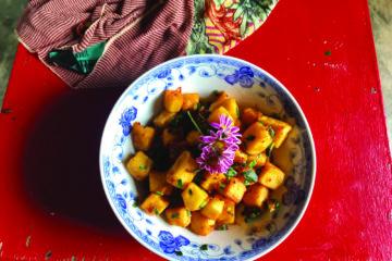 Burmese | Longevity LIVE