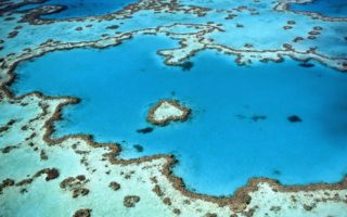 Sunscreen, oxybenzone and damage to the coral reefs