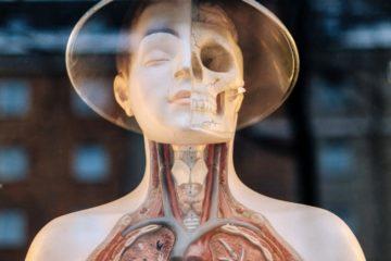 COPD | Longevity LIVE
