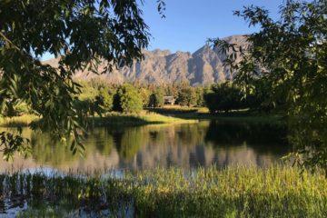 retreat | Longevity LIVE