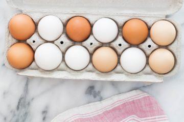 eggs | Longevity LIVE
