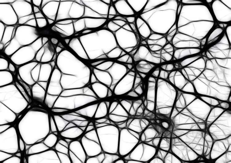 neurotoxins   Longevity LIVE