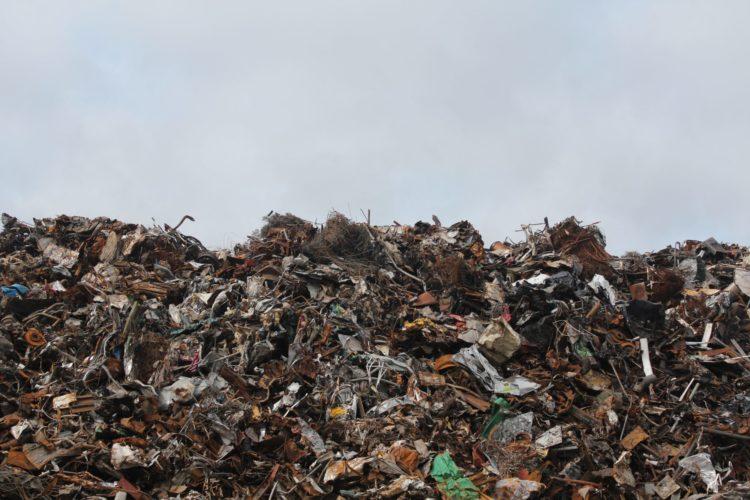microplastics | Longevity LIVE