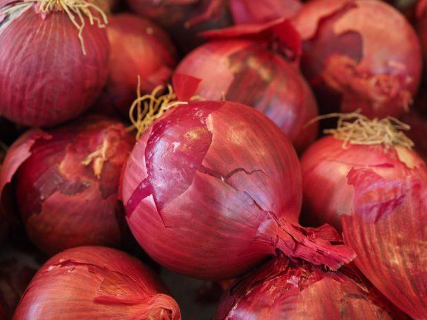 onion | Longevity LIVE