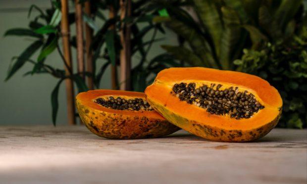 papaya | Longevity LIVE