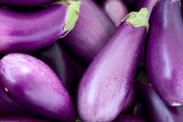 eggplant | Longevity LIVE