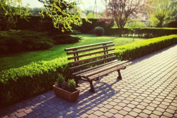 Parks | Longevity LIVE