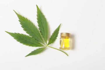 cannabis leaf with cbd oil