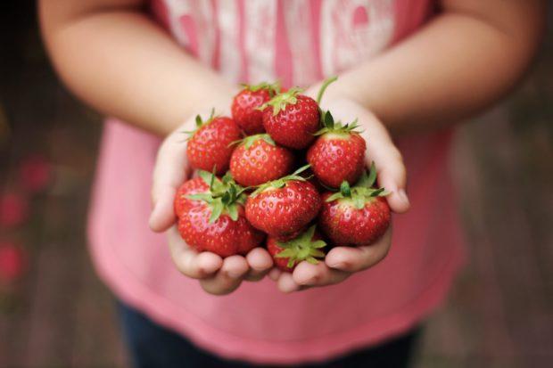 strawberries | Longevity LIVE