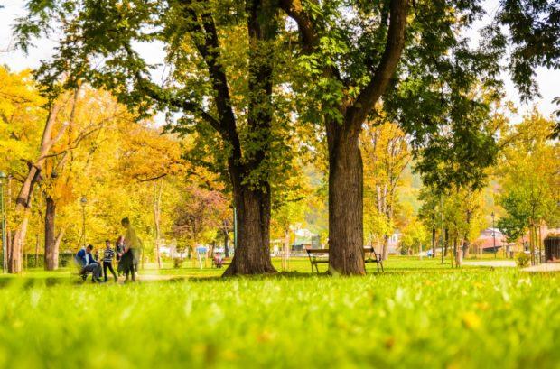 park | Longevity LIVE