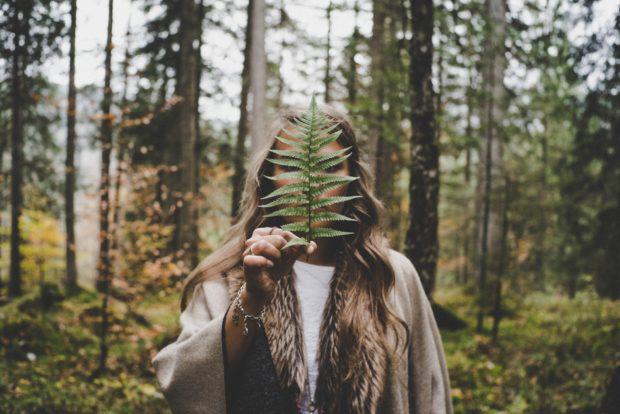 nature | Longevity LIVE