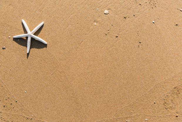 sand | Longevity LIVE