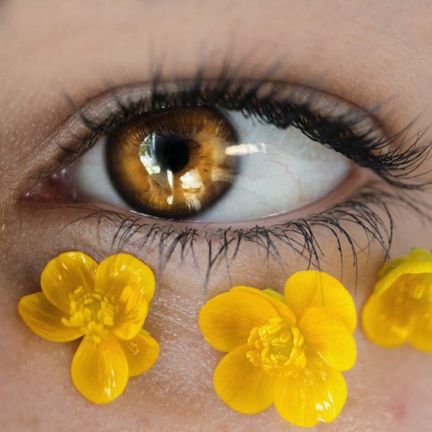 eyes | Longevity LIVE