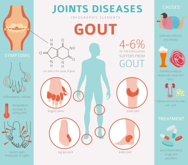 infographic on gout