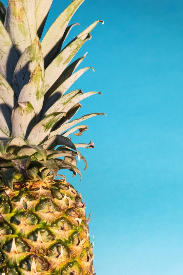 pineapple | Longevity LIVE